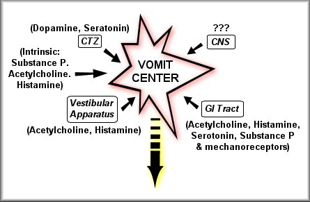 nausea and vomiting specific medications diagram of inside of a 747 diagram of vomiting